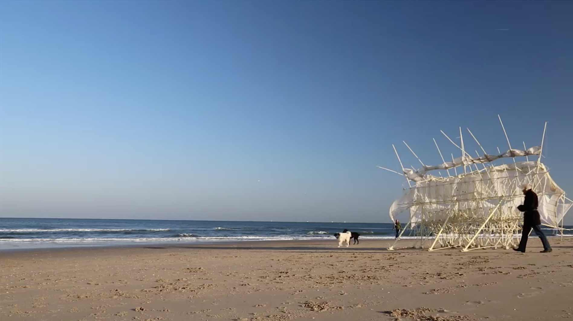 Theo on the beach with a Strandbeest