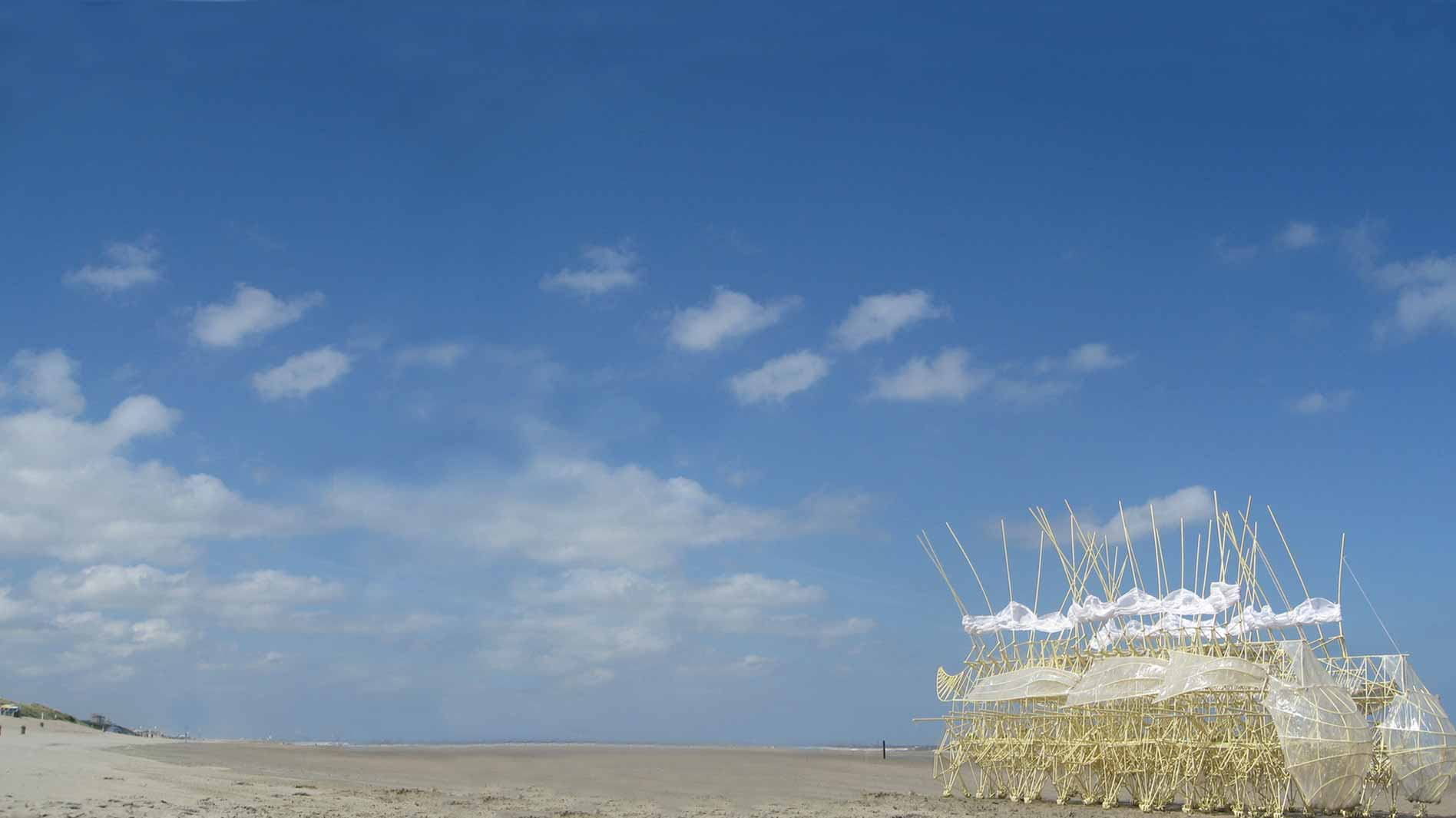 background image of strandbeest at ABMB